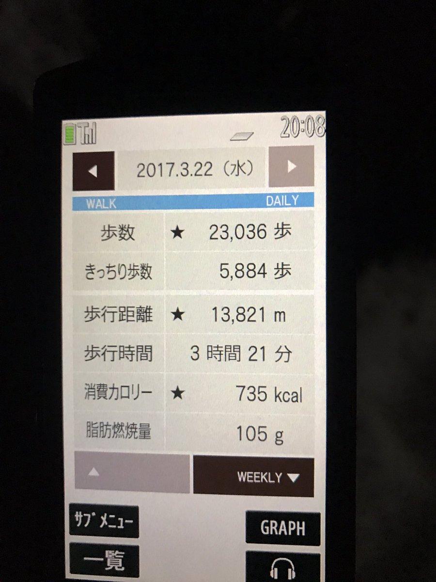 #ウォーキング #運動 #ふらいんぐうぃっちJR駅から亀の甲門(なおんち)方面へ。公園内お散歩したら撤収予定。30000