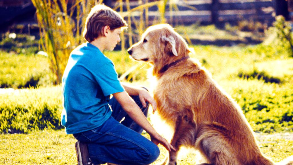Disney Movies Coming to Netflix in April Include #HomewardBound, #QueenOfKatwe, and More