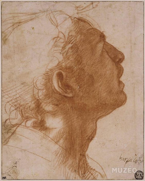 Andrea Del Sarto (1486–1530) Florence, Italy. It is unusual to see a sketch where all the details are in shadow. https://t.co/Nzbsgy0a0D