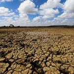 Climate Scientists warn of worse drought situation ahead