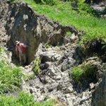 Kaikoura: 'Most complex quake ever studied'