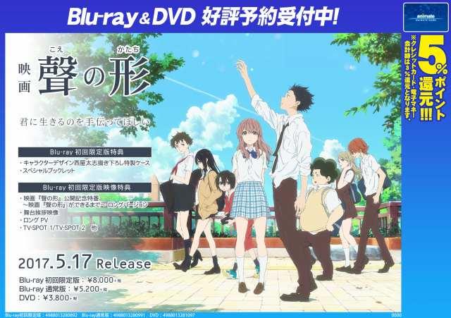 【ビジュアル予約情報】映画『聲の形』BD/DVDの発売が5月17日発売決定!!ご予約受付中!BD初回限定版にはキャラクタ