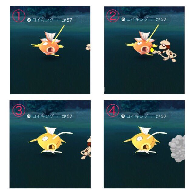 『リアスは見た!』色違いの犯人はこいつだ!?  #pokemon   #ポケモン #ポケモンGO大会  #コイキング #