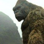 「キングコング:髑髏島の巨神」を観る。今年一番の興奮!意表突く冒頭から早くもボルテージはMAX。怪獣大戦争なケレン味も魅