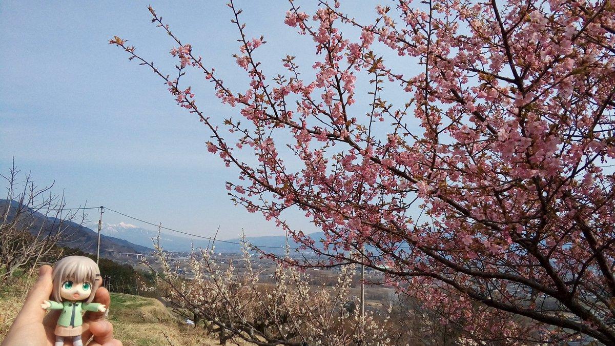 桜と八ヶ岳ー#ヤマノススメ