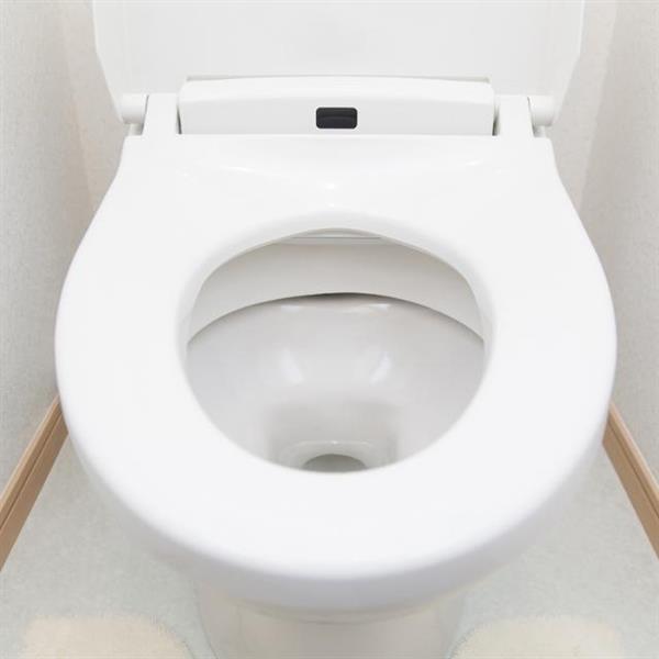 【教えて!goo】なぜトイレの便器は白ばかりなのか… 以前は様々な色が存在!?  https://t.co/lloYwljhlI