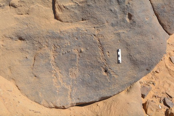 Ancient rock carvings depicting masked people discovered in Egypt https://t.co/nQj3ZpwpjJ