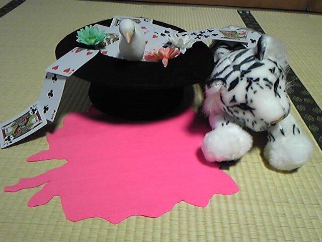 小道具できました!マジシャン=シルクハットという安易なイメージによりヨレヨレだけど帽子作りました。最初かぼちゃパンツから