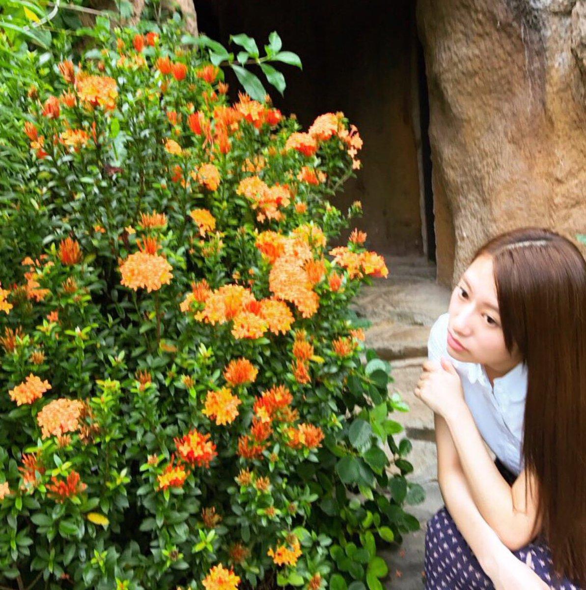 このオレンジ色の花も美しい(^^) 後ろに見えるドアの奥は、洞窟の中にある瞑想ルームなんですよ(^^) htt...