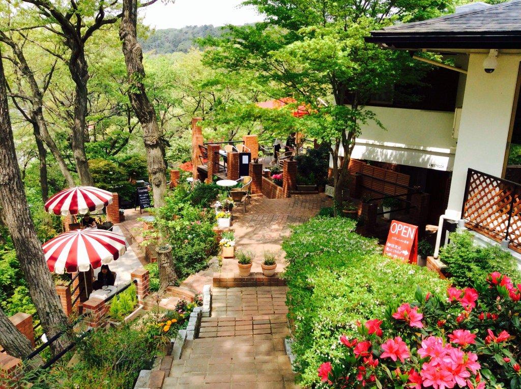 【Cafe terrace 樹ガーデン】鎌倉まさにジブリの世界のようで天空の城ラピュタ☆マイナスイオンたっぷりで本当にく