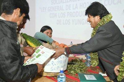 Nueva ley garantiza la siembra de coca de por vida en Bolivia - Diario Co Latino