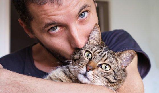당신의 고양이는 내내 마음을 숨기고 튕기고 있었던 건지도 모른다. 과학적 연구 결과에 따르면 고양이는 음식보다 당신을 더 좋아한다 https://t.co/viOi81SrYY