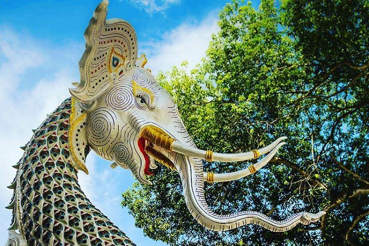 test Twitter Media - A half elephant/half snake at a #temple in Northeast #Thailand. Photo credit: Tyler Brooks https://t.co/KP3lKEYVVa -CO https://t.co/5XSS86sq1b