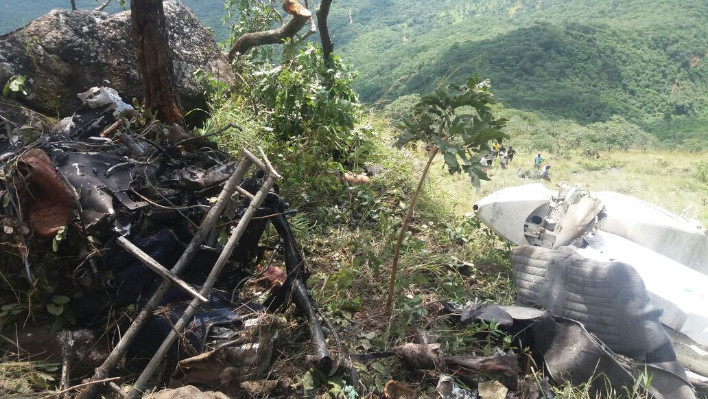Moza hails Zim on plane crash response | The