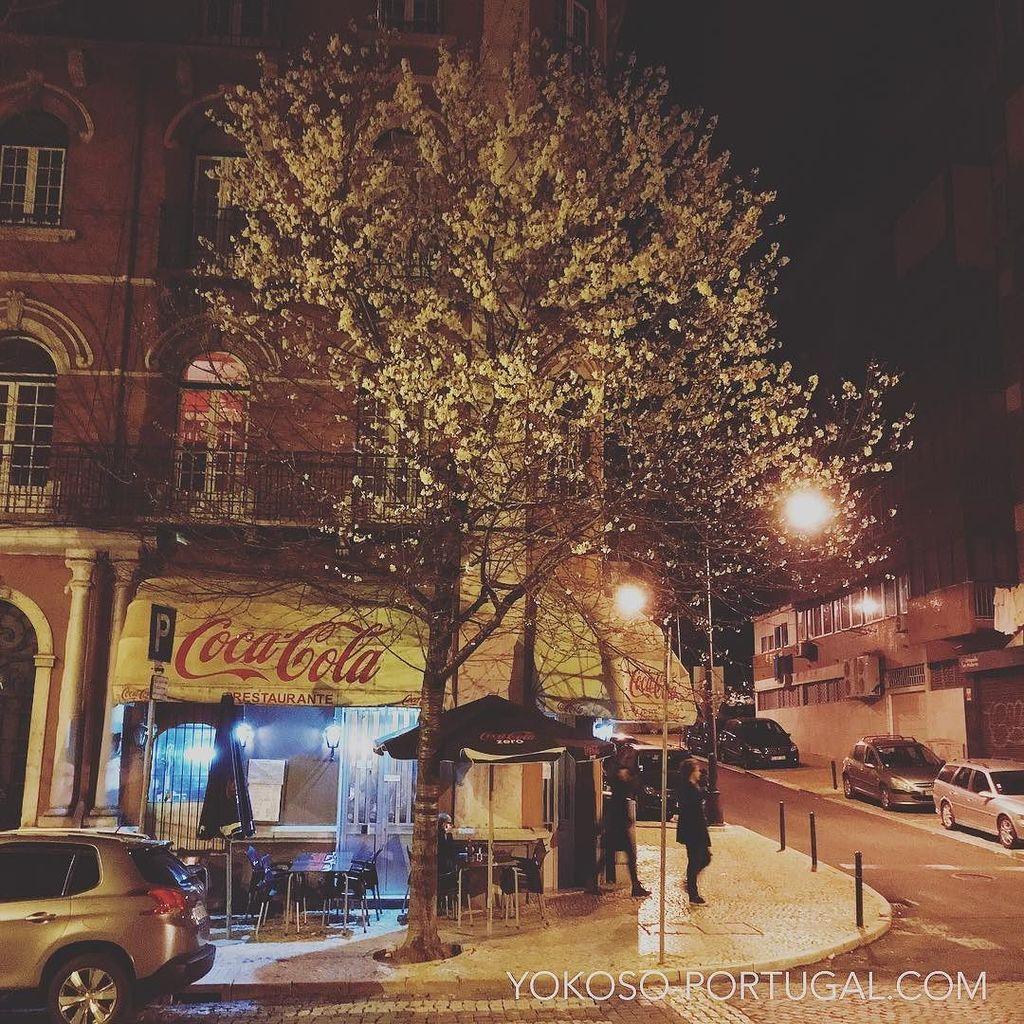 test ツイッターメディア - リスボンの夜桜。 #リスボン #ポルトガル https://t.co/nKUBN7OYte