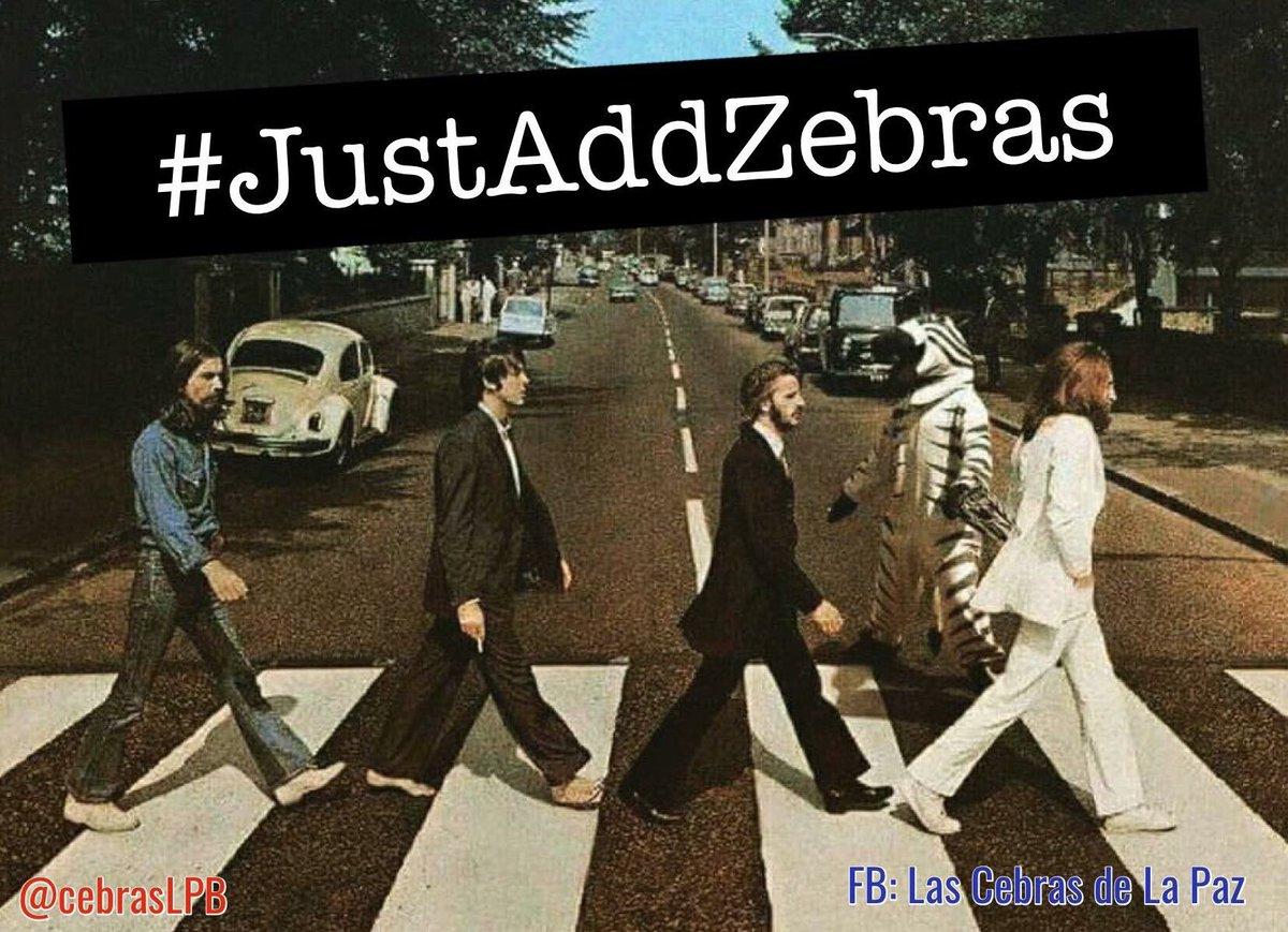 jmontevillat: Hei #MagentoImagine #justaddzebras https://t.co/Sf3khxRpAj