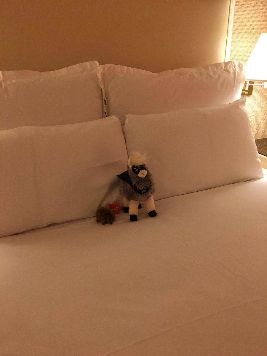 lfolco: Came back to my room to find this. @WynnLasVegas housekeeping is awesome :) #Magentoimagine https://t.co/PjVFmqsYI7
