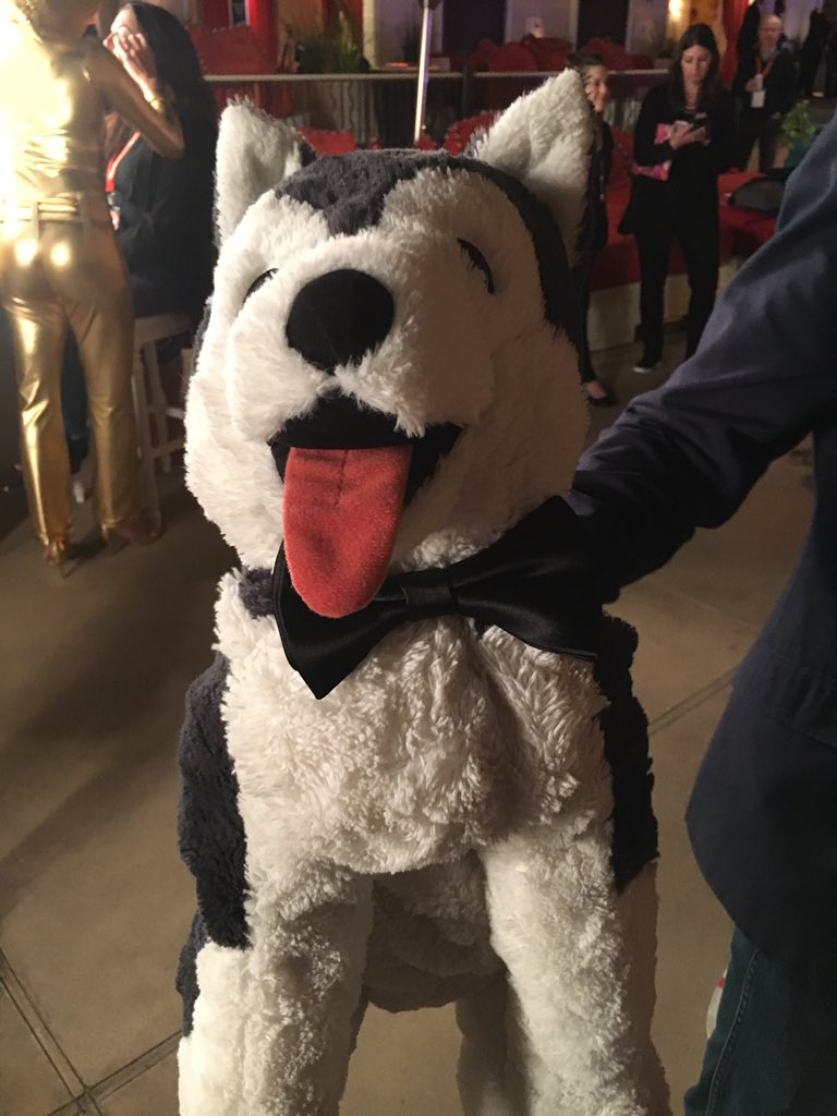 SnowdogApps: We are ready to party! #MagentoImagine https://t.co/Yr9L0kt0JD