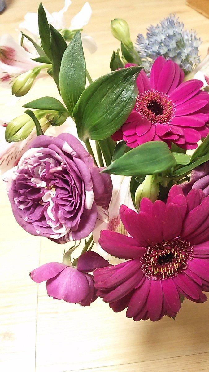 今週はバタバタ一週間!!土曜はお花見してバイドクさとうさんに胸キュンし!日曜は殺し屋さんでテシメリコさんにワキワキ♡月曜