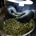 Uruguay to start selling marijuana in pharmacies