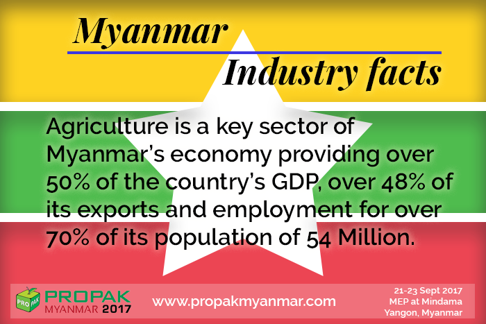 test Twitter Media - (Fun) Fact Friday!  #processing #packaging #myanmar #trade #show #business https://t.co/84jCX54CPj