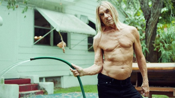 Happy Birthday Iggy Pop, now get off his lawn you punk kids