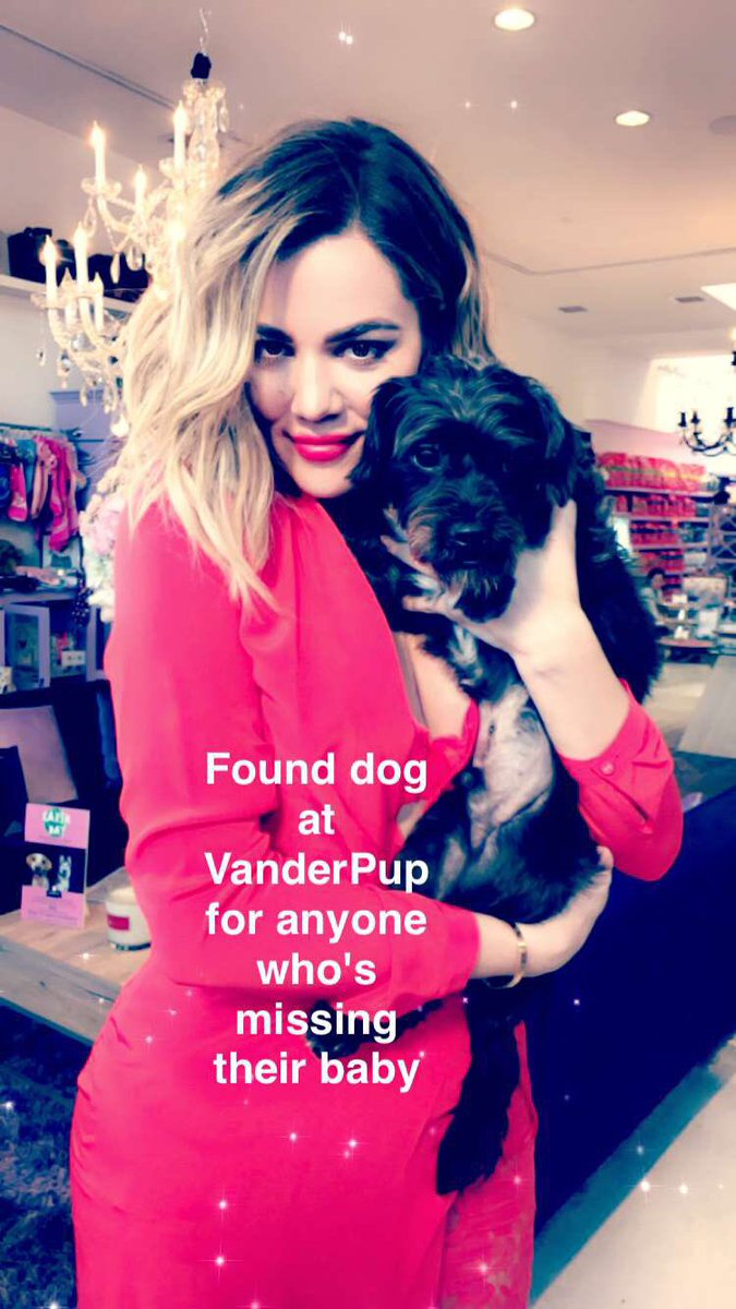 Found puppy at @VanderpumpDogs if your missing your dog ???????? https://t.co/IStAc1zznY