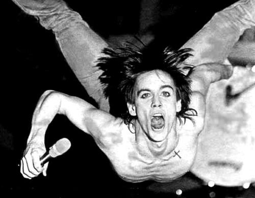 Happy Birthday Iggy Iggy Pop - Home  vía