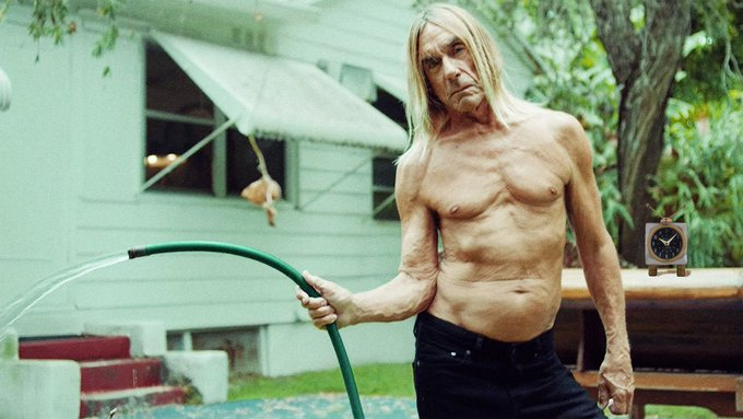 Happy Birthday to Iggy Pop! He turns SEVENTY today. Hopefully someone gets him a shirt