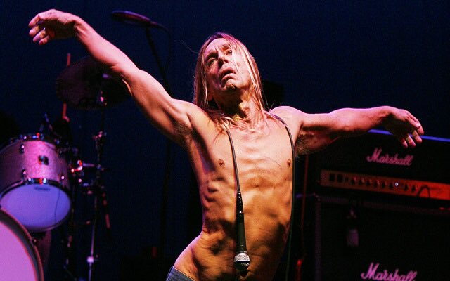 I love this man so very, very much. Happy 70th Birthday, Iggy Pop.