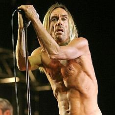 Happy Birthday Iggy Pop 70year old