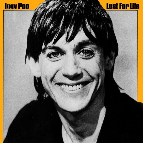 Happy Birthday to Rock\n\Roll Trailblazer Iggy Pop!! I Your Music
