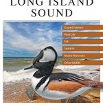 Reading Room: A Field Guide to Long Island Sound & More