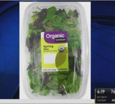 Recall issued after dead bat found in pre-packaged Wal-Mart salad