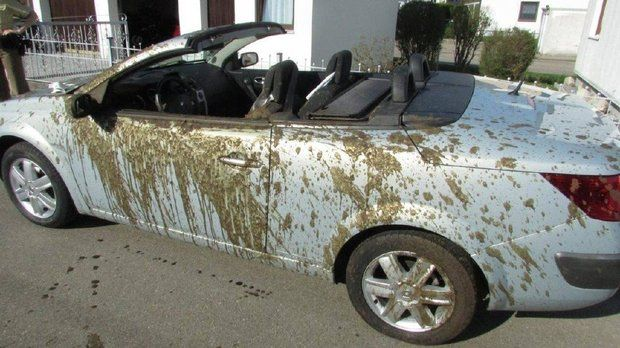 Farmer accidentally covers car, driver and passenger with liquid manure