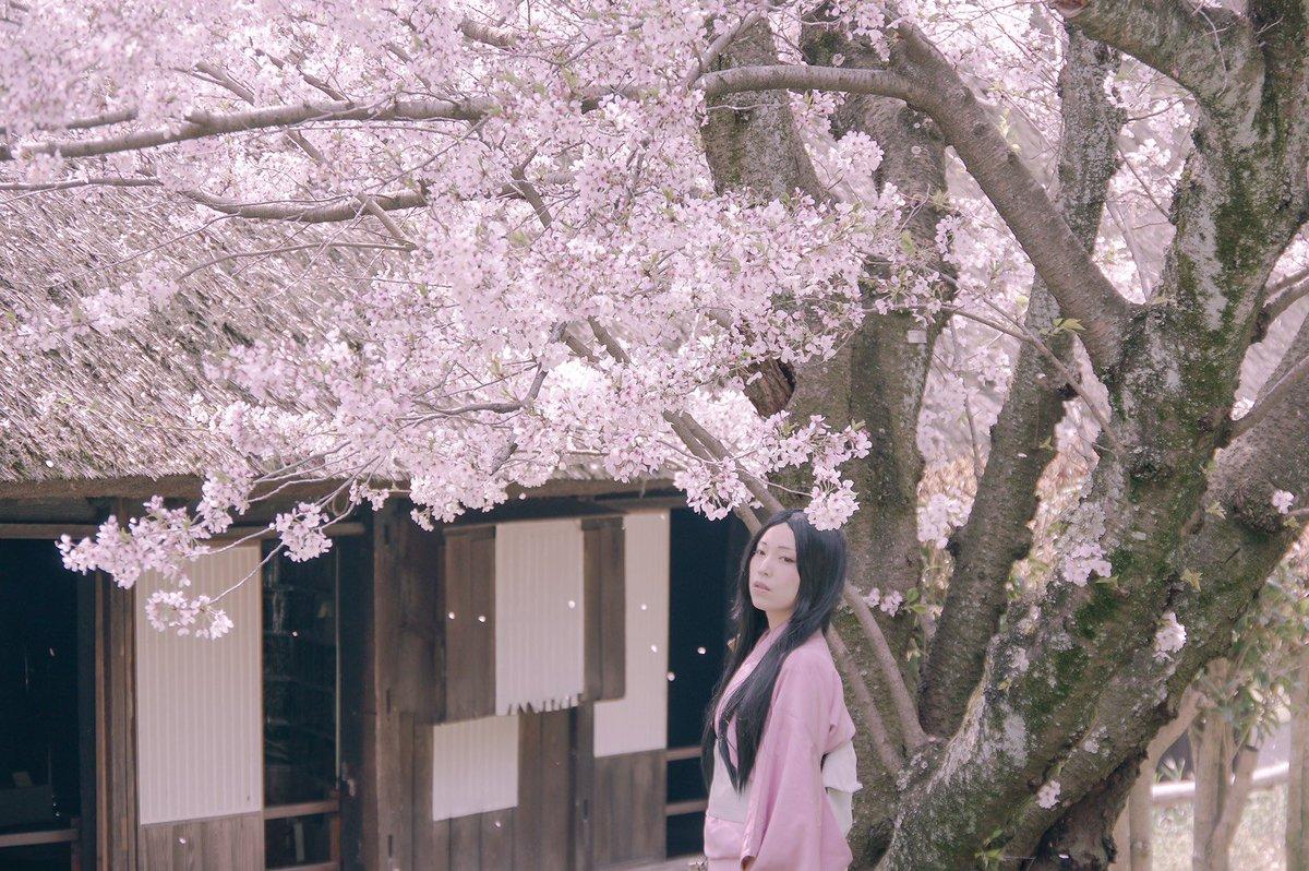 物心ついた頃、彼女はすでに庭の離れに住んでいた。そして、今も変わらぬ美しでそこにいる。蟲師 続章「花惑い」Photo :