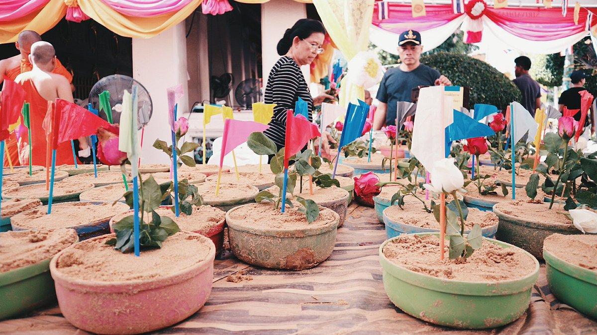 #Waterfestival