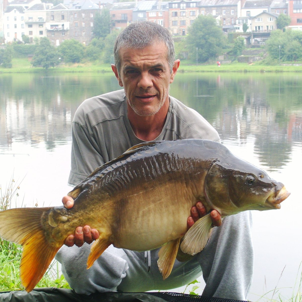 Petite urbaine deviendra grande ...  #carpfishing #carp #photography #carpe<b>Passion</b> https://t.