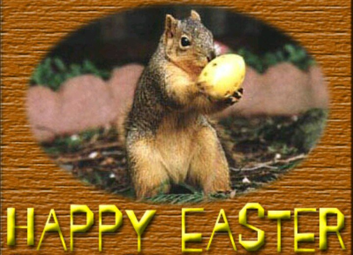 HAPPY EASTER FOLKS From All At PUKKA SQUIRREL BAITS #TEAMPSB #PSB #CARPFISHING #ANGLING #PUKKASQUIRR