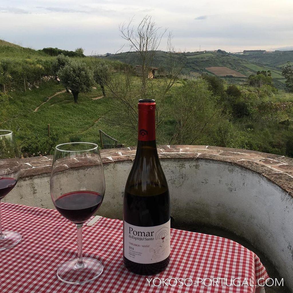 test ツイッターメディア - マンゼワインの里、Cheleirosを眺めながら頂くPomar do Espírito Santo。おいしいワインと贅沢な時間。  https://t.co/X78tVHGKbP. #ポルトガル https://t.co/mJhw8Mt1nt