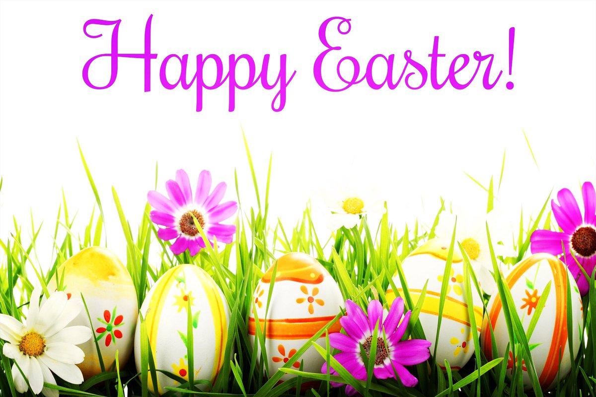 Happy Easter🐰🐣 #eastersunday #bunnies #Church #HappyEaster #easteregghunt https://t.co/IvmybZEKBI