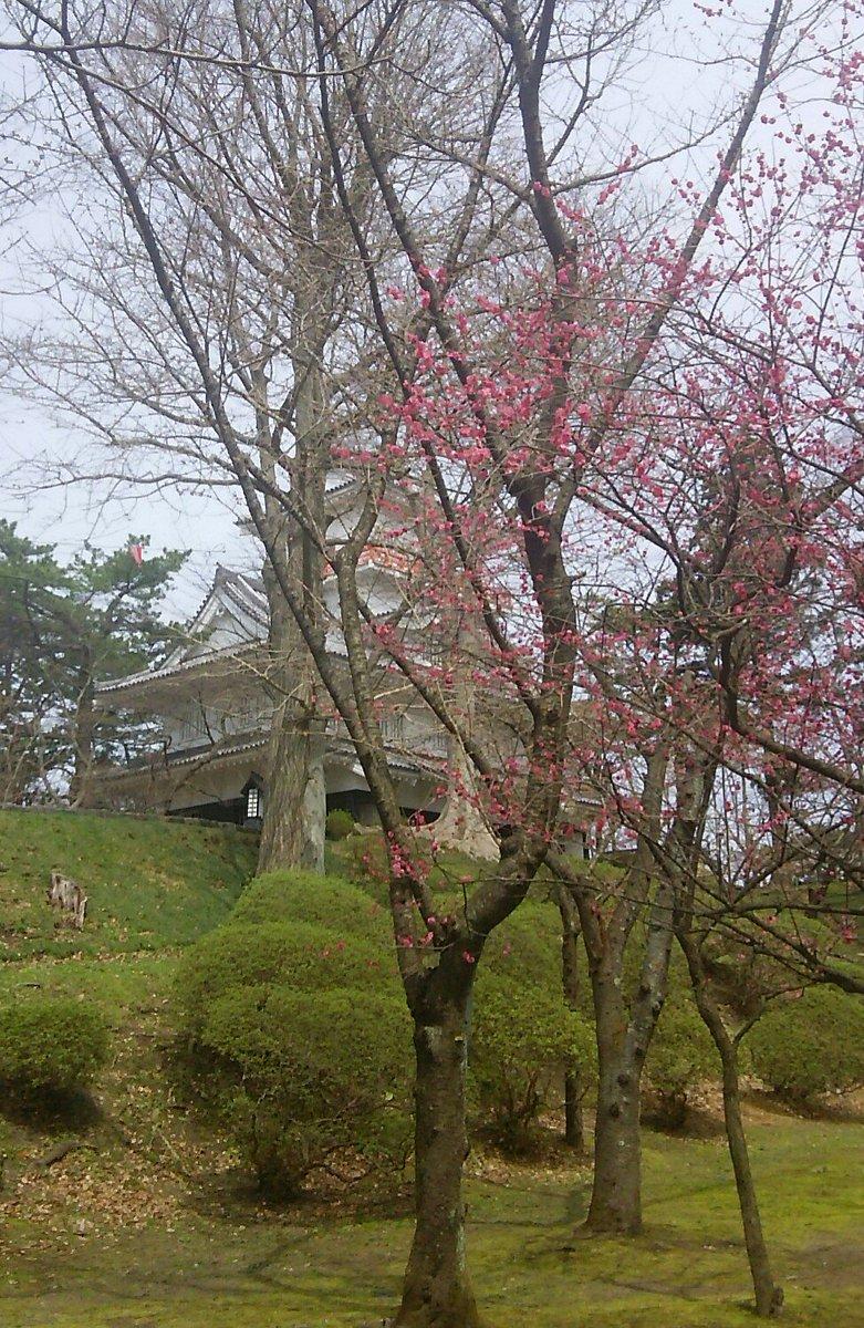 ログホライズンの最新話に陸奥A子の幻影を見た、昼休みの千秋公園。
