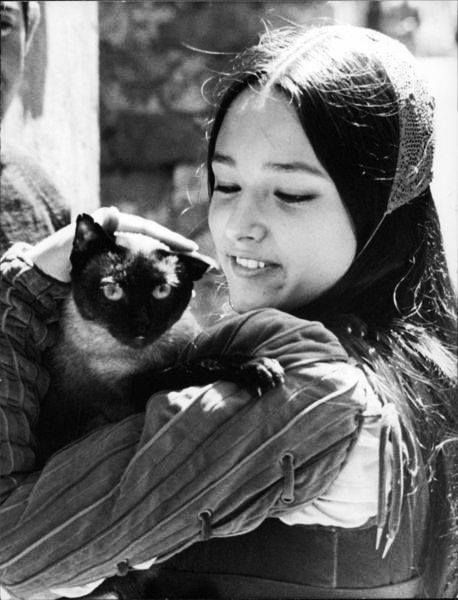 Happy birthday to Olivia Hussey