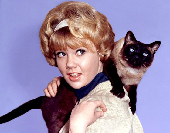 Happy birthday to Hayley Mills