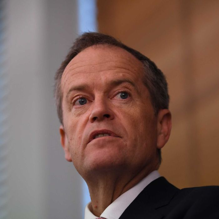 Bill Shorten claims 77pc of 457 visa workers excluded from checks thanks to FTAs