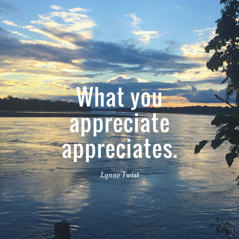 RT @lynne_twist: What you appreciate appreciates. https://t.co/6sdVDVDugU