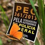 #PEC361 pela INDEPENDÊNCIA da PF para que ela limpe o Brasil da CORRUPÇÃO! http://t.co/51voGDQWd7