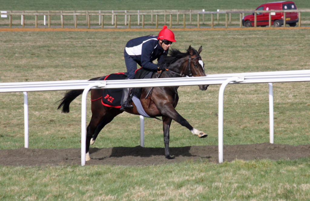 Good to see @ChappleHyam giving his new stable amateur @FahadAlthaniQR a chance up Warren hill. #limerickhereicome! http://t.co/TLIeLIhFiD