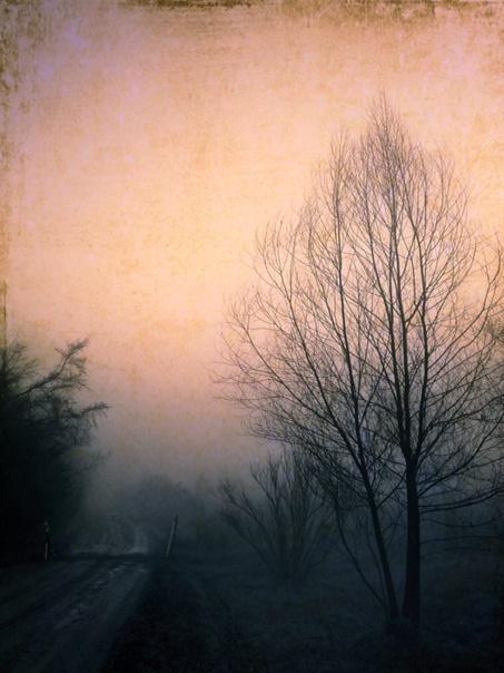 #pixlr #fog #iPhoto http://t.co/98cZJOvQWs