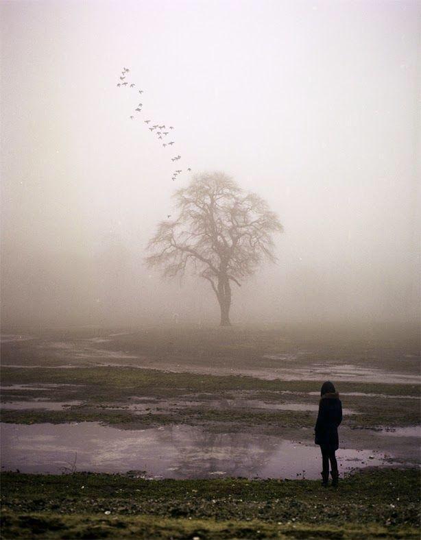 """""""La esperanza le pertenece a la vida, es la vida misma defendiéndose.""""  ―Julio Cortázar http://t.co/Te0hpLCSiP"""